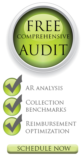 Free Comprehensive Audit